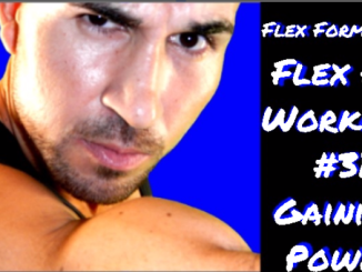 Flex Formation Flex Fit Workout 31